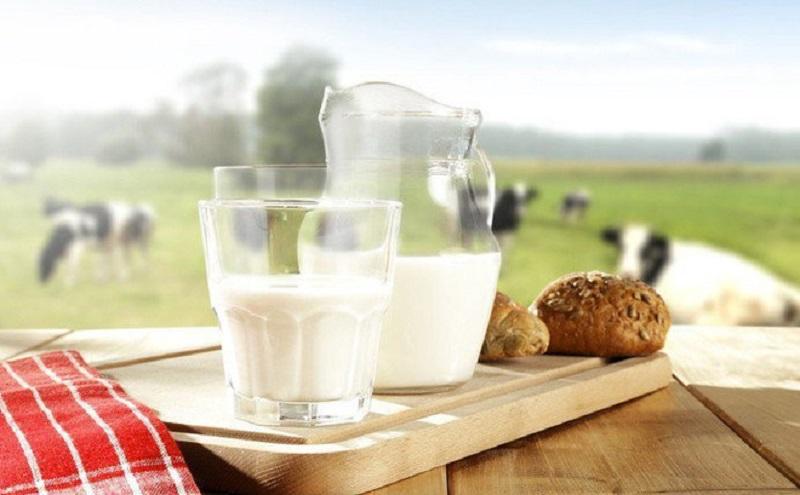 sữa tươi nhập khẩu